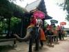 Trip_Thailand-Cambodia_Aug2016_41